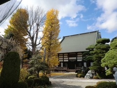 2011.11.16.真光寺1.JPG