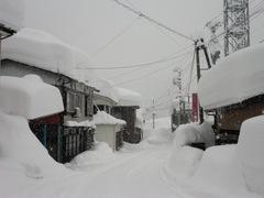 2012.01.28.4.JPG