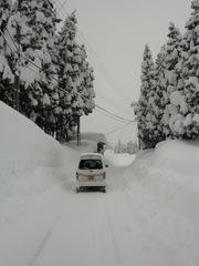 2012.01.28.5.JPG