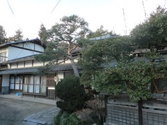 2012.12.17.4.JPG