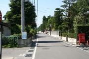 屋敷林2(三郷).JPG